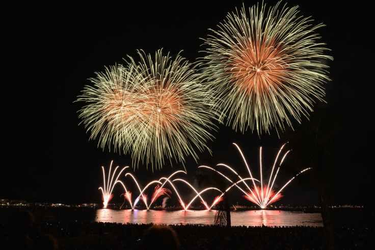 fireworks-rocket-night-sky-46159.jpeg