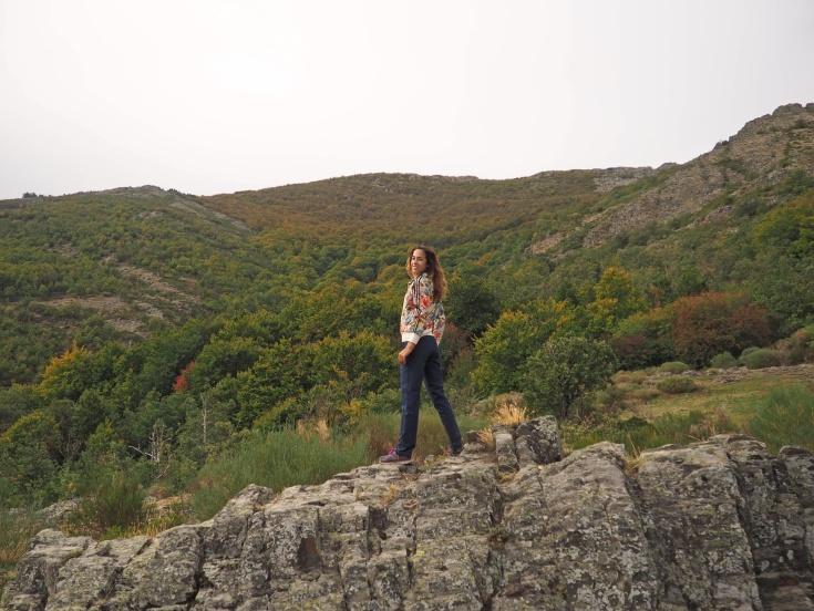 Senda de carretas, vistas del Hayedo a lo lejos