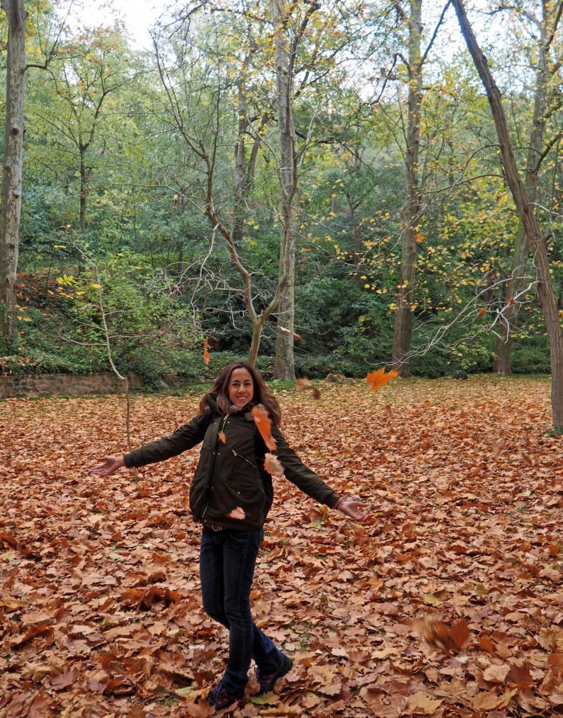 Monasterio de Piedra. El vergel de Juan Federico Muntadas repleto de hojas caídas en el suelo.