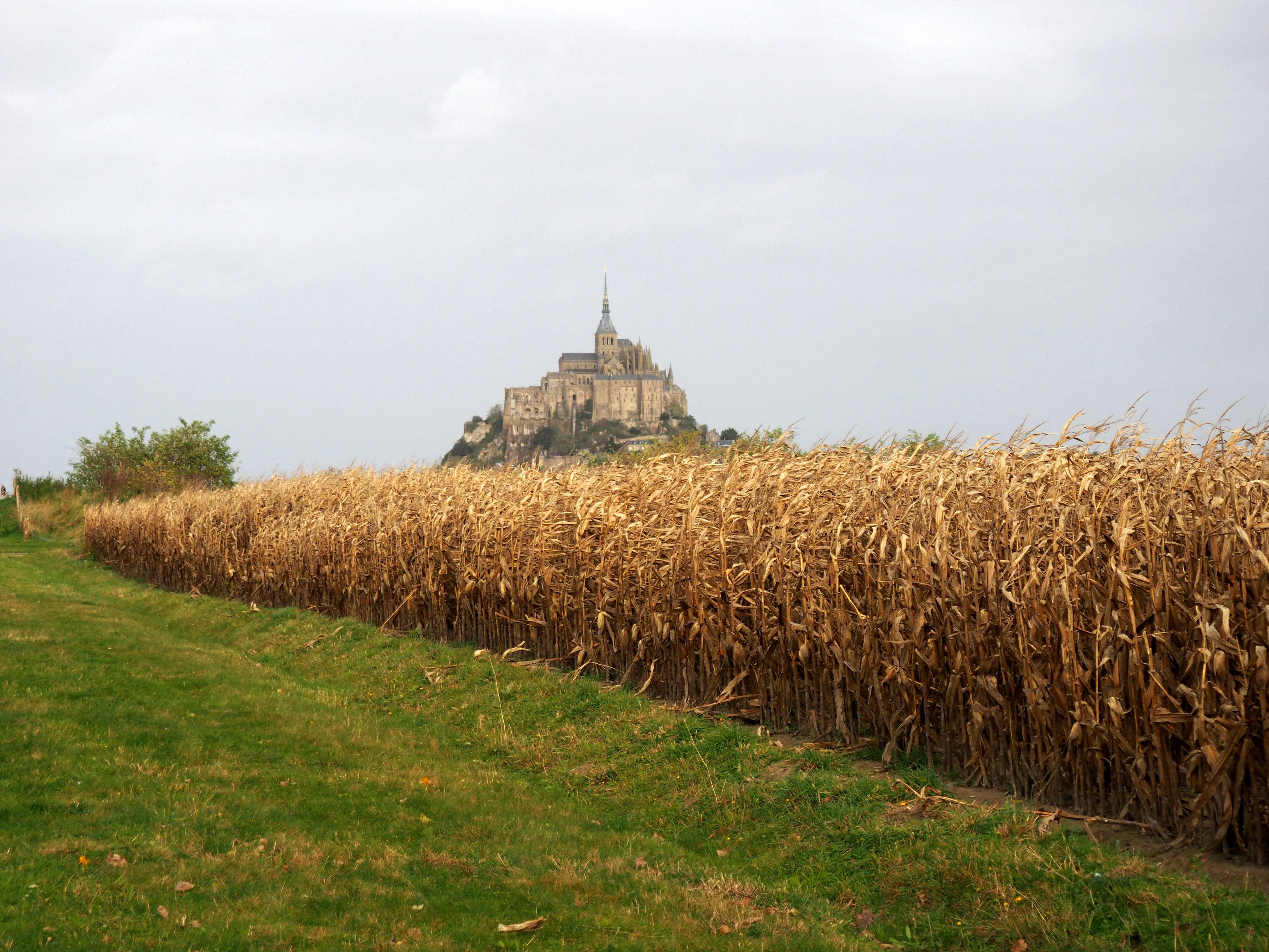 Camino hacia el Mont Saint Michel